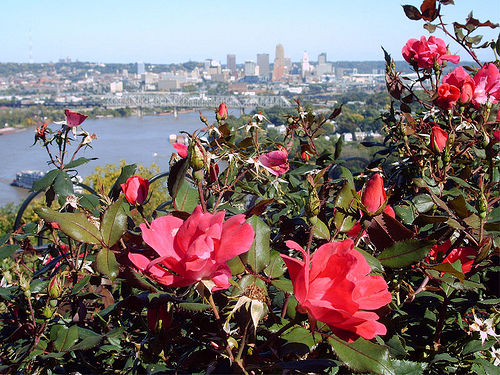 Price Hill Mt. Echo Park View of Cincinnati - Kevin LeMaster